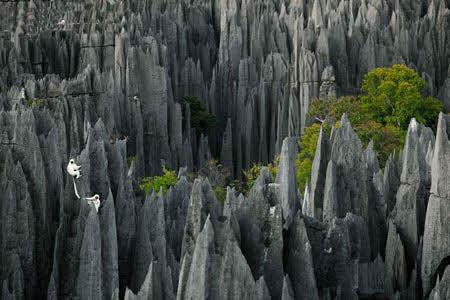 گزارش تصویری مکانی شگفتانگیز و جالب در ماداگاسکار