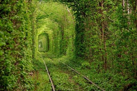 رویاییترین تونلهای جهان,زیباتربن تونلهای جهان