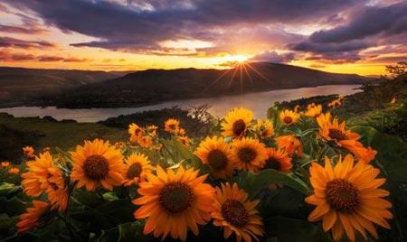 ده مقصد گردشگری برتر بهار و تابستان امسال کدامند