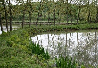 دریاچه سد سقالکسار,سد سقالکسار