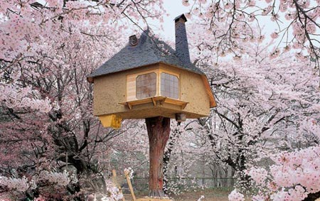 گردشگری: 12 خانه درختي که شيفته آن خواهيد شد