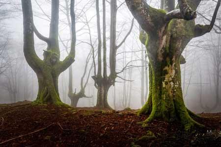 پارک بسیار زیبا و اعجاب انگیز در اسپانیا,اسپانیا,جاذبه های گردشگری اسپانیا