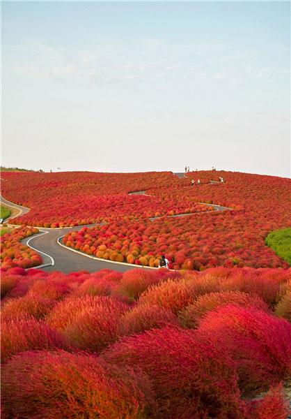 پاییز جهان,تصاویری از پاییز جهان