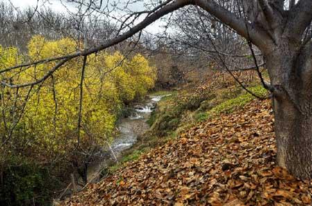 تصاویری از طبیعت زیبای ایلام,ایلام,مکانهای تفریحی ایلام