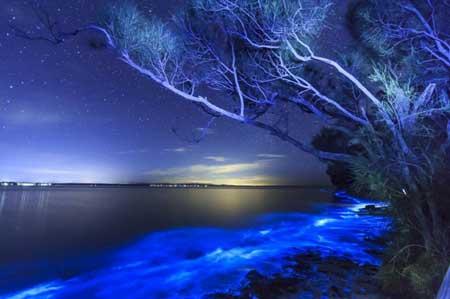 سواحل عجیب و شگفتانگیز دنیا,زیباترین سواحل دنیا,جالبترین سواحل دنیا