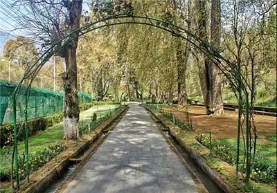 عکس باغ هارون کشمیر,آشنایی با باغ هارون