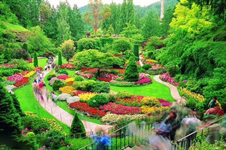 ir3146 2 - زیباترین باغهای جهان + عکس
