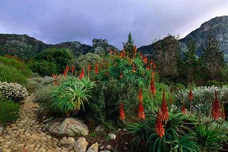 جالبترین باغهای دنیا,قشنگترین باغهای دنیا
