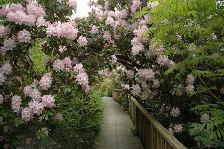 قشنگترین باغهای دنیا