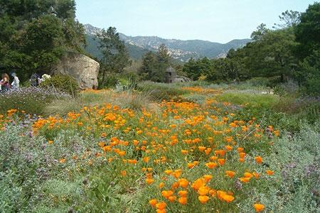 ir3146 8 - زیباترین باغهای جهان + عکس