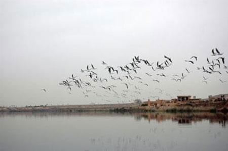 عکس های دریاچه فشافویه,تصاویر دریاچه فشافویه