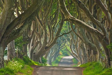 بهترین جاده های دنیا,جالبترین جاده های دنیا