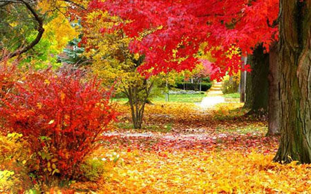 زیباترین شهرهای دنیا,زیباترین شهرهای دنیا در فصل پاییز