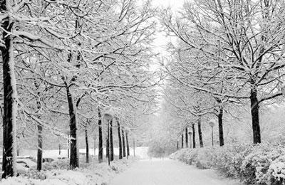 برنامه سفر,سفر زمستانی