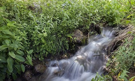 دریاچه کوه گل,تصاویر دریاچه کوه گل