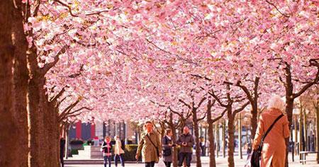 جاذبه های گردشگری ایران در فصل بهار