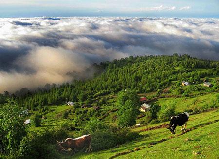 روستای مازیچال,کلاردشت مازیچال