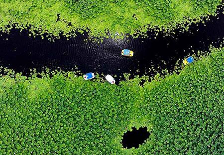 جاهای دیدنی چین, عکس دریاچه دونگ هو, مکانهای تفریحی چین, دریاچه های چین, جاذبه های گردشگری چین,چین, دریاچه دونگ هو, دیدنی های چین, تصاویر دریاچه دونگ هو