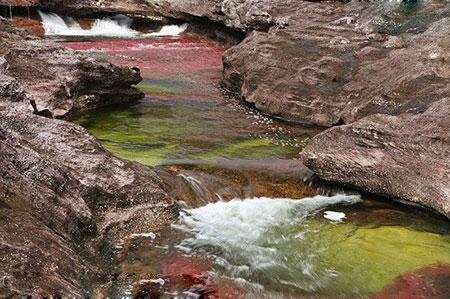 ودخانه کانو کریستال در  کلمبیا,جاهای دیدنی جهان