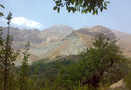 پوشش گیاهی منطقه حفاظت شده دنا