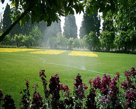تصاویر باغ جهان نمای شیراز