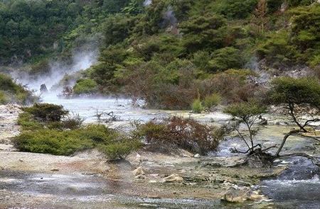 تصاویر دریاچه ماهی تابه,عکس های <p style=