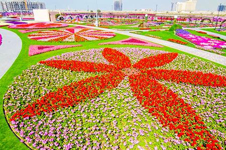 باغ گل معجزه دبی, بزرگترین باغ گل دنیا در دبی