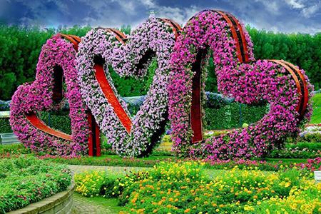 بزرگترین باغ گل دنیا در بیابان های دبی