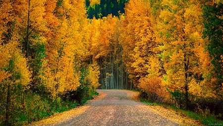 جاهای دیدنی در فصل پاییز