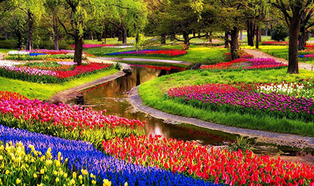 عکس های دیدنی از کشور هلند