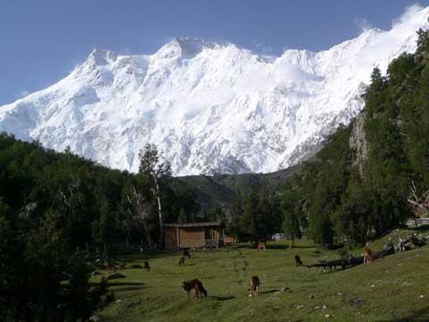 پنج کوهستان خطرناک جهان
