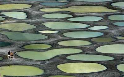 دریاچه,دریاچه osoyoos , زیباترین دریاچه,عجیبترین دریاچه