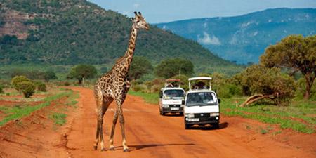 کنیا,کشور کنیا,پارک ماسایی مارا