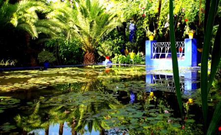 باغ ماژورل مراکش,باغ ماجوریل,ساعات بازدید از باغ ماژورل