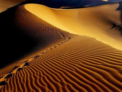 کویر مصر,روستای مصر,عکس کویر
