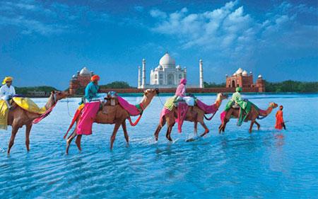 تورهای گردشگری،تور مسافرتی,تور هند