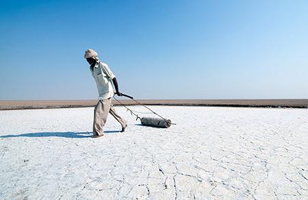 کویر نمکی هند,صحرای نمک هند,کویر نمکی هند از عجایب دیدنی هند