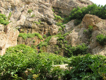 تنگه ساواشی,آبشار ساواشی,آبشار ساواشی کجاست