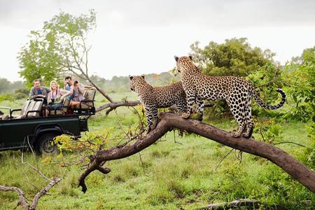 پارک ملی یالا,عکس پارک ملی یالا در سریلانکا,پارک ملی یلا