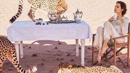 عکس های آنجلینا جولی روی مجله بازار,جدیدترین عکس های آنجلینا جولی