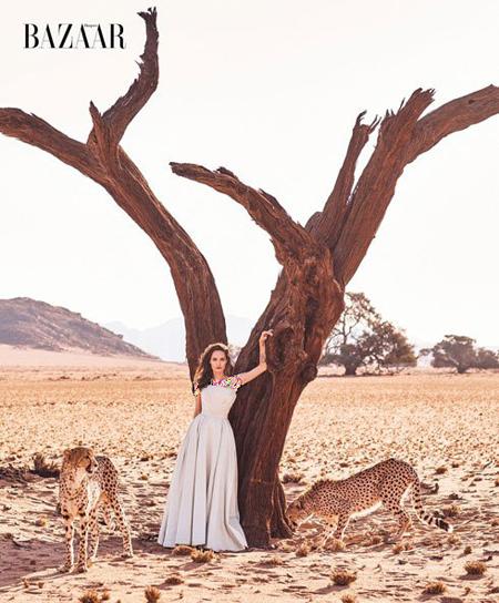عکس های آنجلینا جولی,تصاویر آنجلینا جولی روی مجله بازار