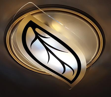 دکوراسیون چراغ سقفی, کاربردهای انواع چراغ سقفی