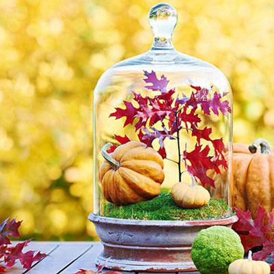 پاییزی فضای خانه,دکوراسیون پاییزی
