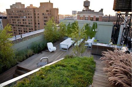 نکاتی برای درست کردن بام سبز,طراحی بام سبز