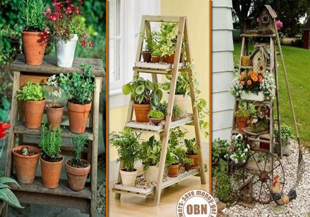 باغچه های آویز در دکوراسیون منزل
