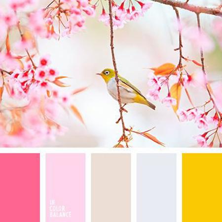 ترکیب رنگ های مناسب چیدمان صورتی, چیدمان صورتی رنگ مناسب خانه