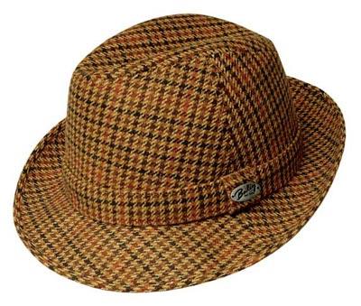 مدل کلاه مردانه, مدل کلاه رسمی مردانه