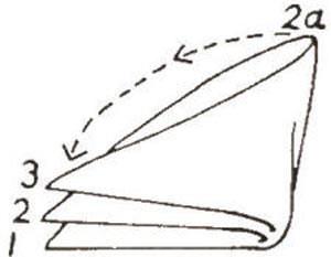 نحوه تا زدن دستمال جیبی , آموزش تاکردن دستمال جیبی