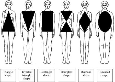 آشنایی با اندام های مختلف , لباس اندام های مختلف