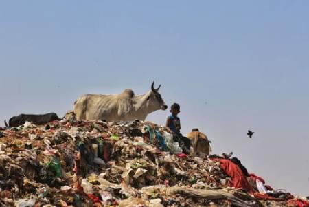 عکسهای جالب,عکسهای جذاب,کوه زباله